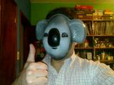 Avatar de Koala
